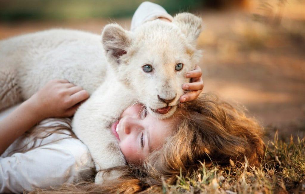 Вышел трейлер семейного кино «Девочка Миа и белый лев»