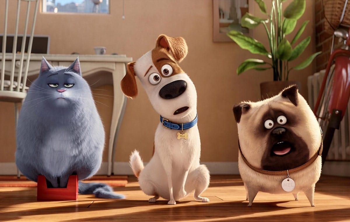 Вышел трейлер мультфильма «Тайная жизнь домашних животных 2»