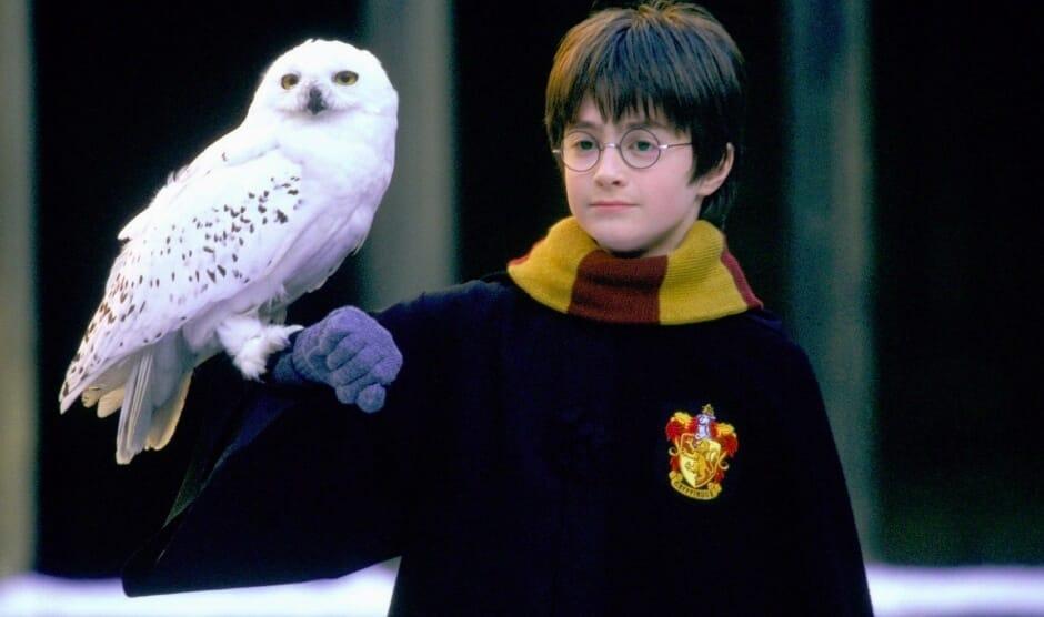 Гарри Поттер и принципы воспитания: 5 советов из детских книг