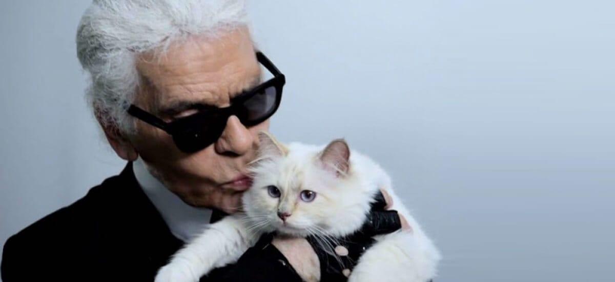 Кошка Карла Лагерфельда станет самым богатым животным в мире