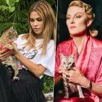 Кто сказал «мяу»: 10 котиков Инстаграма и их знаменитые хозяева