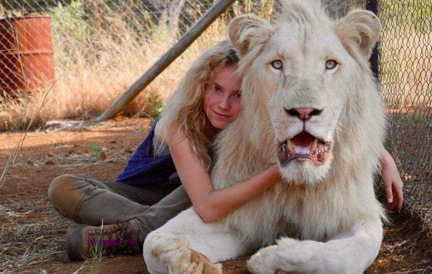 миа и белый лев фильм