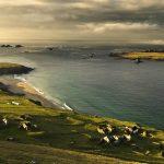 Вакансия мечты: ирландская пара ищет смотрителей на необитаемый остров
