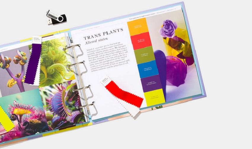 Институт цвета Pantone назвал главные цвета сезона весна-лето 2021